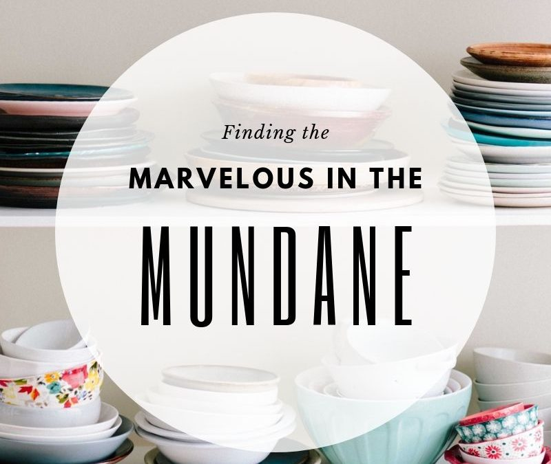 Finding the Marvelous in the Mundane